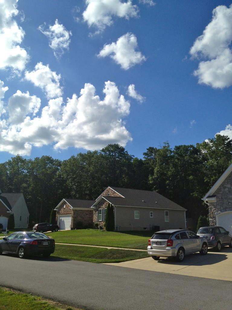 beautiful neighborhood and skies